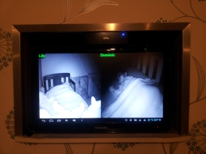 IP Cam Viewer in action